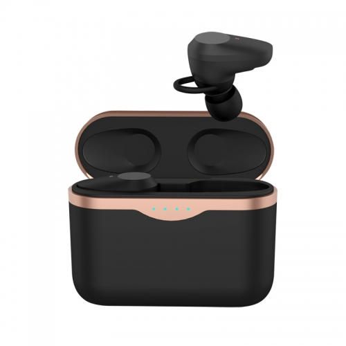 New developed ANC TWS Bluetooth 5.0 earbuds headphone active noise canceling true wireless earphones with Type C port charge case